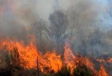Κ. Φωτάκης: Πρωτοβουλίες για την αντιμετώπιση των συνεπειών της κλιματικής αλλαγής (Η Αυγή)