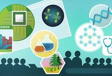 Ολοκληρώθηκε η Δράση «1η Προκήρυξη ερευνητικών έργων ΕΛΙΔΕΚ για την ενίσχυση Μεταδιδακτόρων Ερευνητών/τριών»