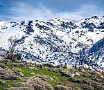 Οι πρώτοι σταθμοί συνεχούς μέτρησης του ύψους του χιονιού στην Ελλάδα εγκαταστάθηκαν στην Κρήτη (huffingtonpost.gr)
